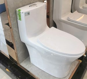 Factory certified one-piece WC toilet with water tank