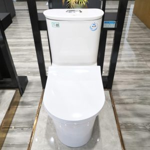 2020 Athens style double flush round ceramic toilet