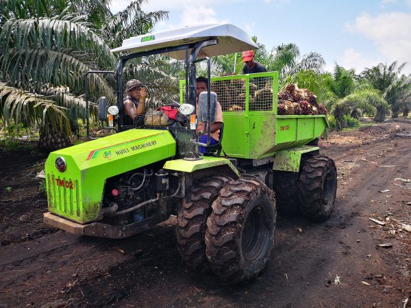 Palm tractor 30HP